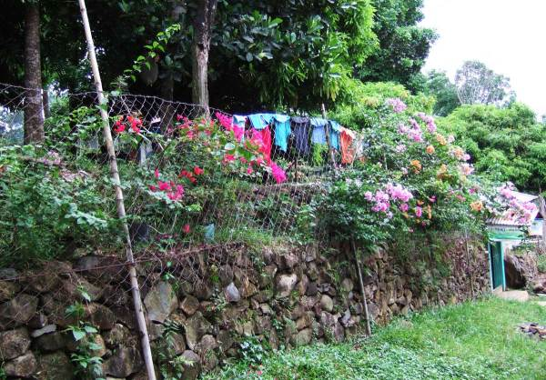 Clothes trying to dry in the wet backcountry near Mambukal Mambukal Resort, Murcia, Negros Occidental, Philippines