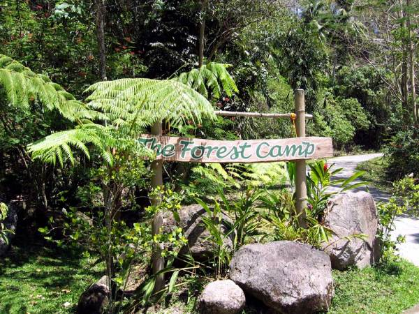 Forest Camp, a park not far from Dumaguete