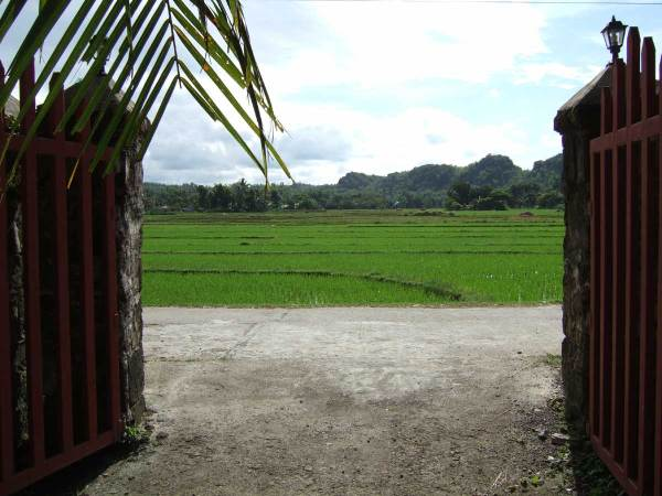 Guimaras Island rice fields from the Navalas Chapel entrance gate.