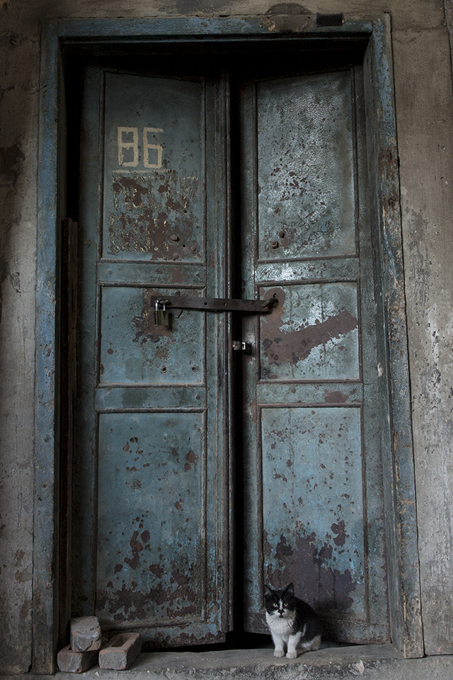 portrait-door