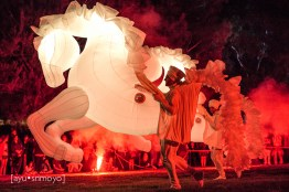 Fiers a Cheval 3, Enlighten Canberra 2014