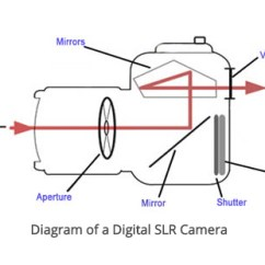Slr Camera Diagram Scom 2012 R2 Architecture Dslr Vs Mirrorless Cameras My Photo Skills This Is A Cross Section Of Showing How The Mirror