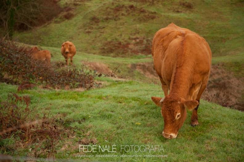 FN_2013_Cantabria_0074