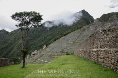 FN_MPYH_2011_Perú_CuzcoMachuPicchu_0036