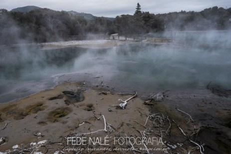 MPYH_2017_New Zealand_Rotorua_0012
