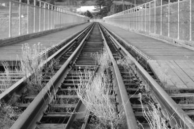 Train Tracks - January 2012