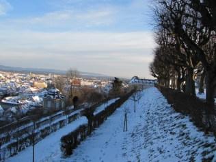 Ausblick auf Bamberg Stadt