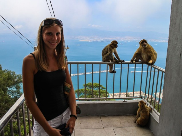 Gibraltar Apes Tourists