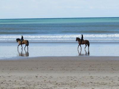 Reiten am Strand Andalusien