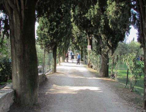 weg-zum-punta-san-vigilio