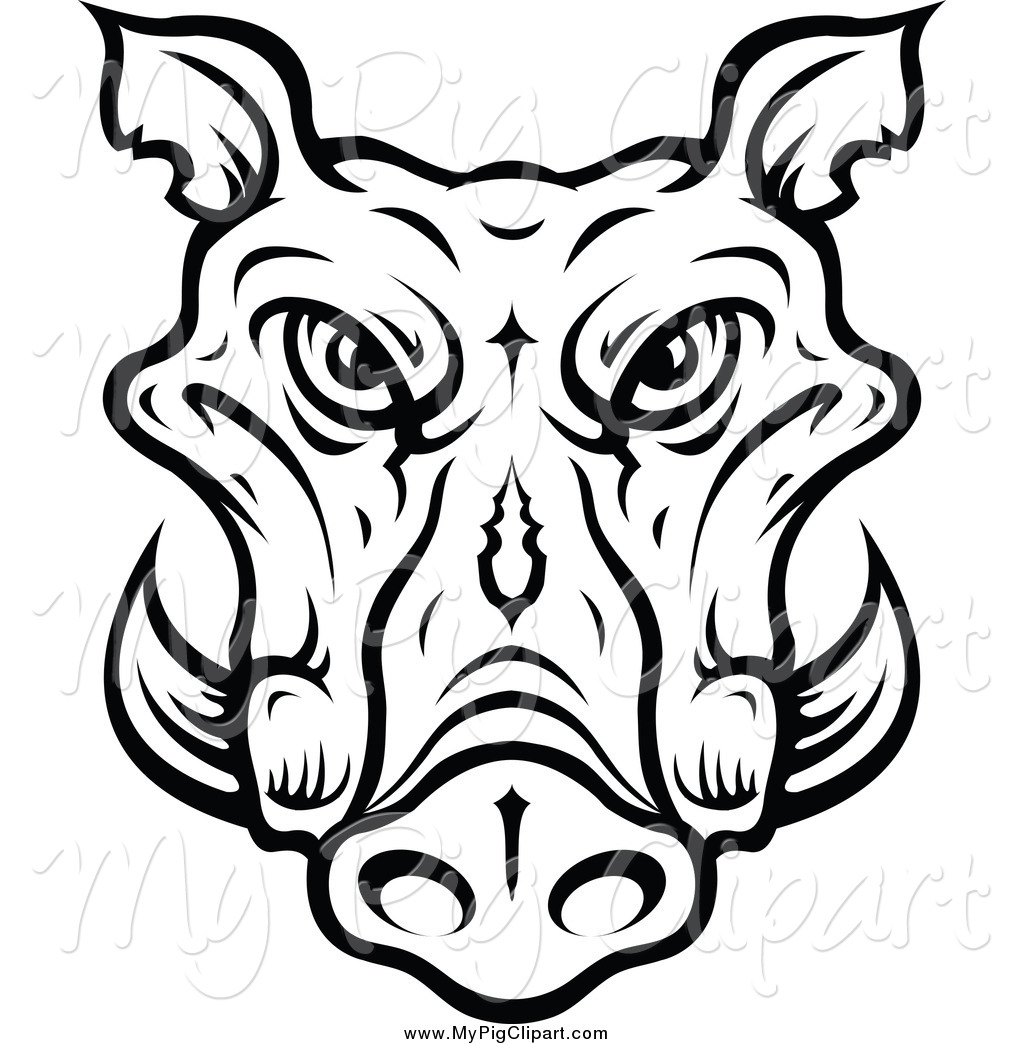 Swine Clipart Of A Lineart Tusked Boar Head By Vector
