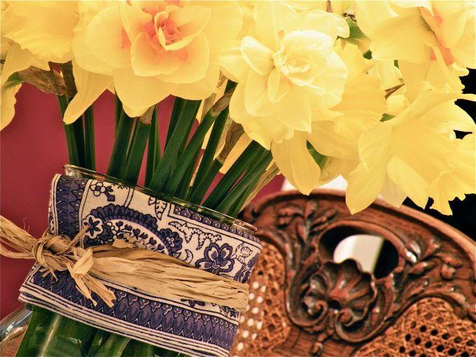 daffodils15