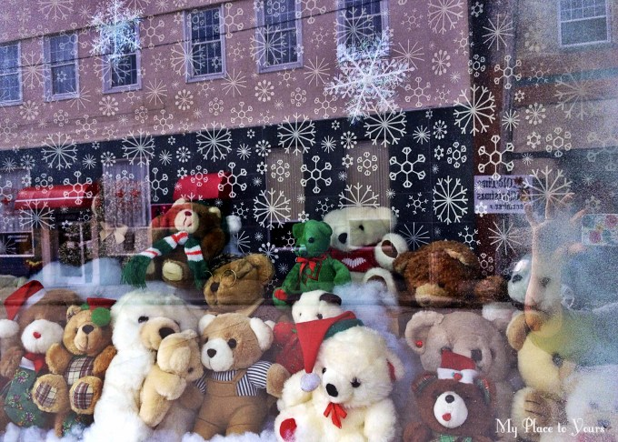 Teddy Bear window