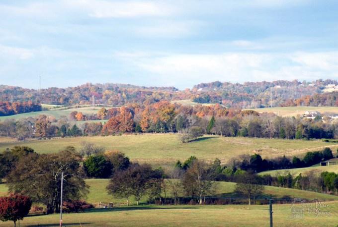 Brotherton Farm - 24