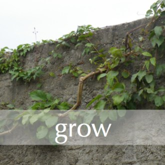 GROW:  Free Write Day 17