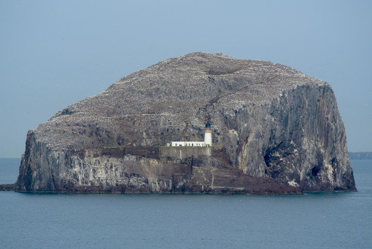 A white lighthouse sitting on Bass Rock in the Firth of Forth.