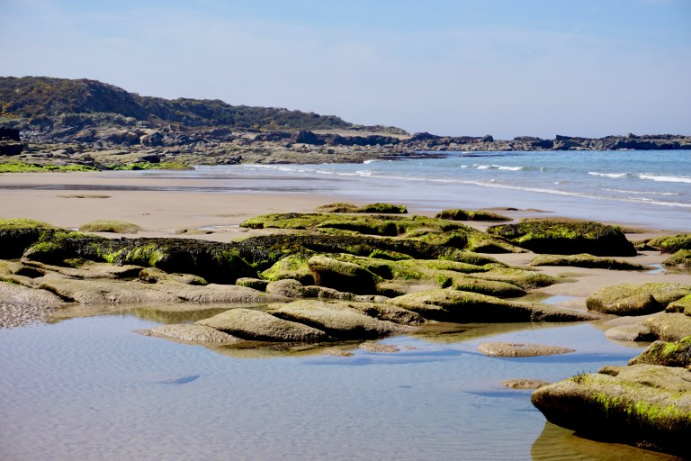 Large algae covered rocks on the beach at Cove Bay.