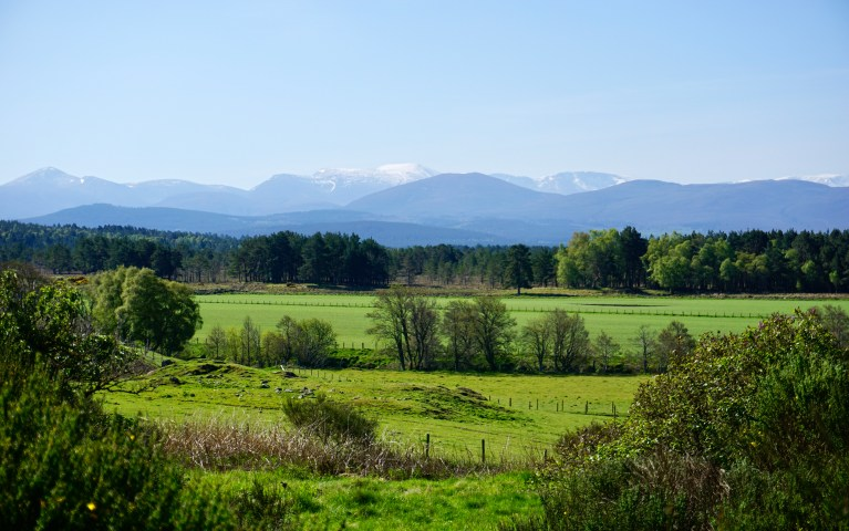Green Scottish countryside and snow capped mountains in the distance.