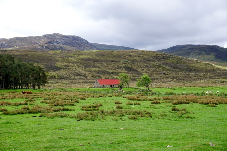 An old crofter's cottage with a bright red roof set in the green countryside of the Scottish Highlands.