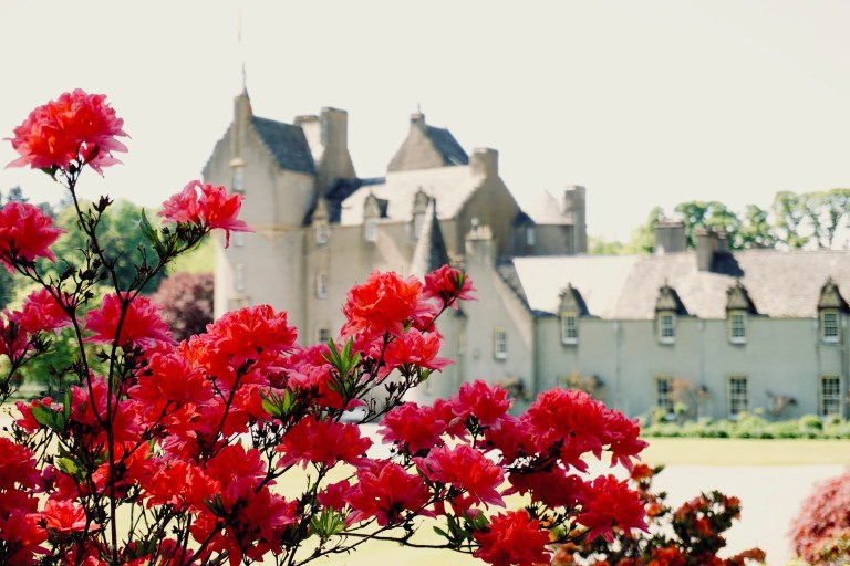Ballindalloch Castle behind bright red flowers.