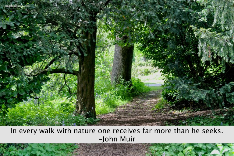 In every walk in nature one receives far more than he seeks - quote by John Muir.