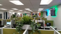 Call Center  Interior Plants  Santa Ana, CA  Plantopia ...