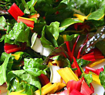 Swiss_chard_003_copy_1