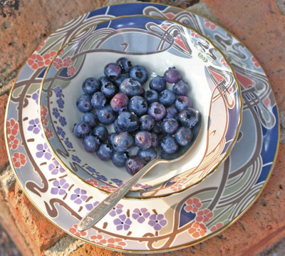 Copy_1_ofblueberries_023_1
