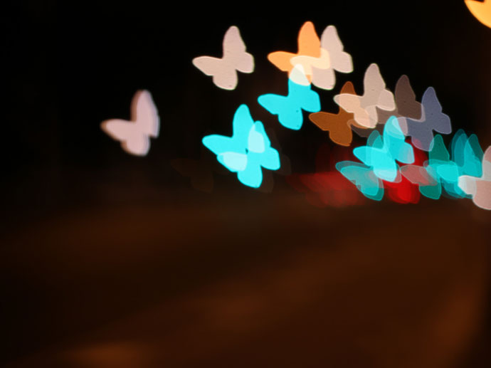 bokeh butterflies