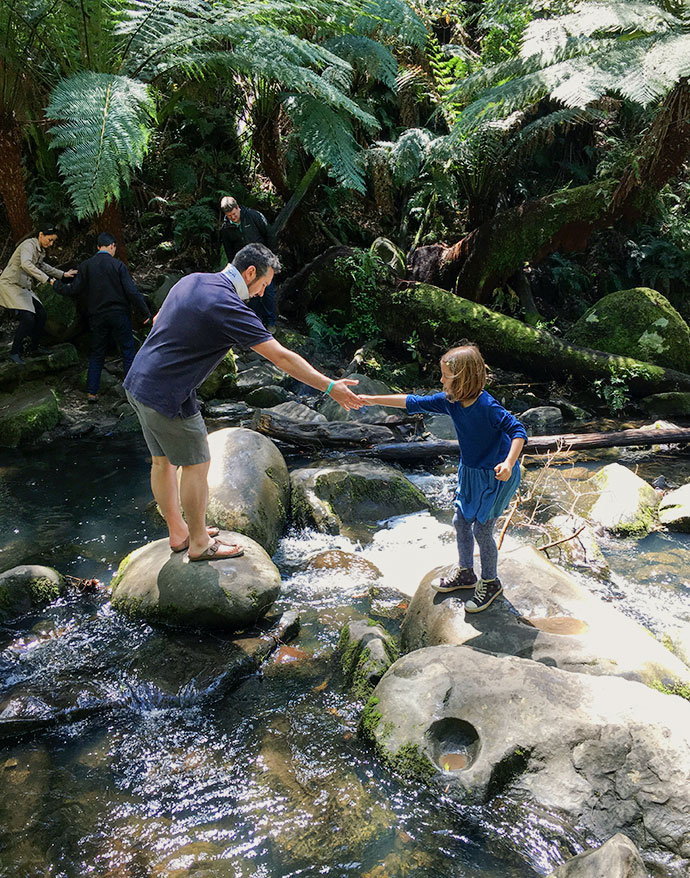 erskine falls lorne - Top 10 Things to See + Do with kids , Great Ocean Road AUSTRALIA mypoppet.com.au