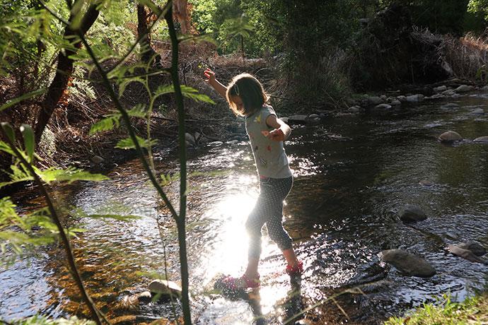 Badger Creek Healesville - mypoppet.com.au