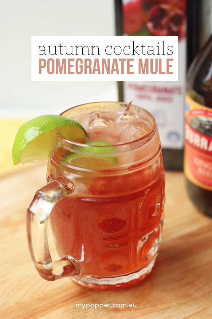 Pomegranate Moscow Mule - mypoppet.com.au