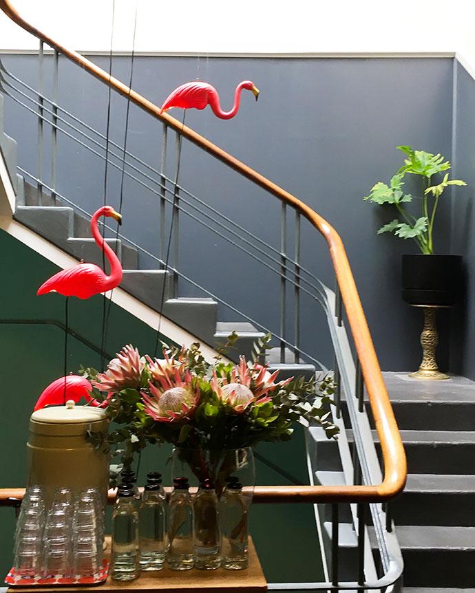 Budget Boutique Hotel - budget accommodation in Hobart Tasmania - Alabama Hotel - mypoppet.com.au