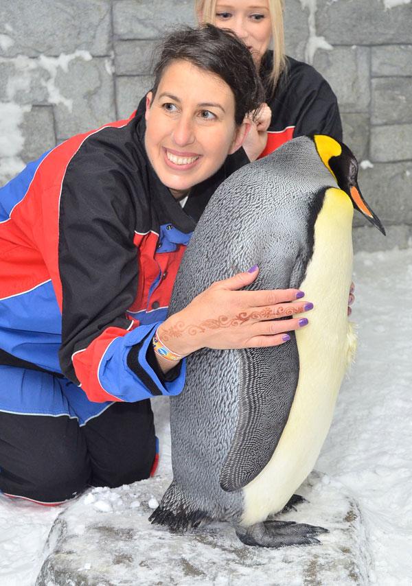King Penguin encounter at Ski Dubai