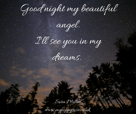 Quote: Goodnight my beautiful angel. I'll see you in my dreams.