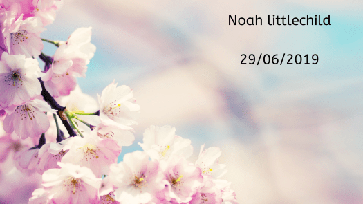 Remembering our babies: Noah Littlechild.