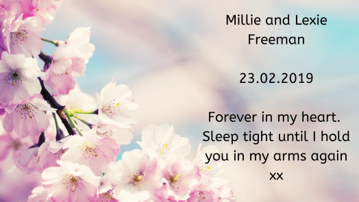 Remembering our babies: Millie and Lexie Freeman.