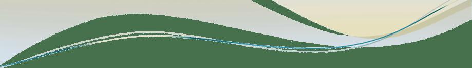Portfolio-Partners-Swirl-Header