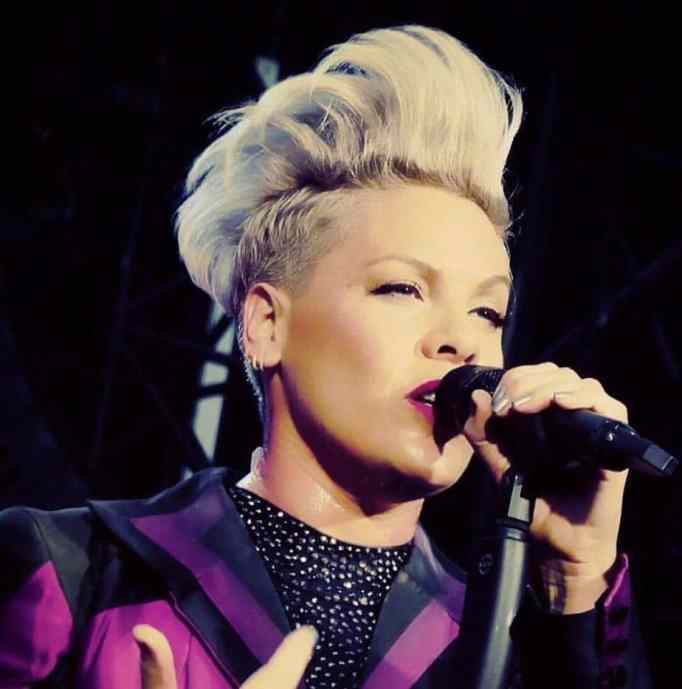 Pink pledged a donation of $500,000.