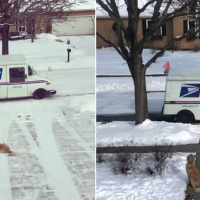 Adorable dog waits for his favorite mailman every day to give him sweet hugs