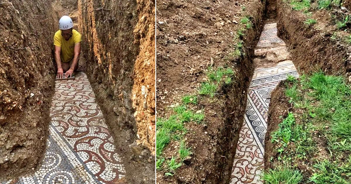 Archaeologists discovered remarkably intact ancient Roman mosaic under a vineyard in northern Italy - my positive outlooks