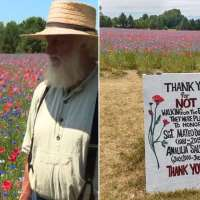 Parents create 4-acre field of flowers to honor late son who served in Afghanistan