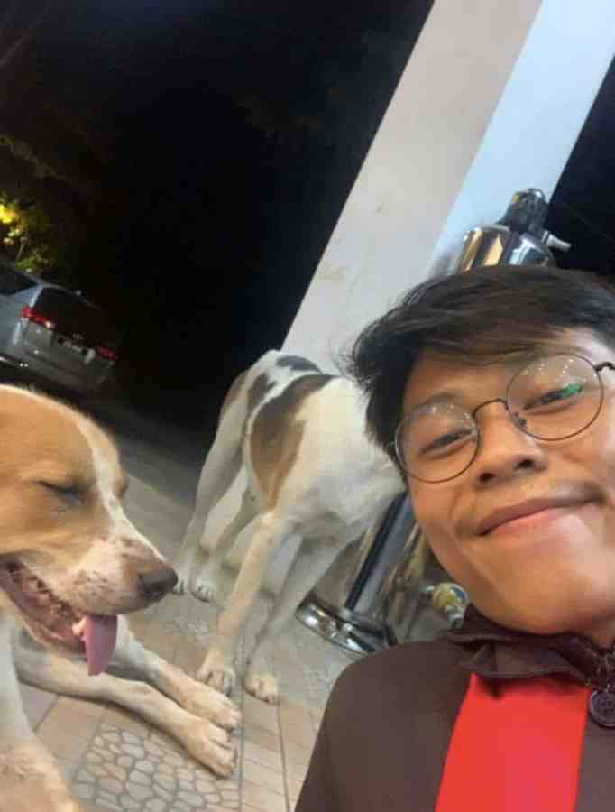 Man posing for a picture with two stray dogs