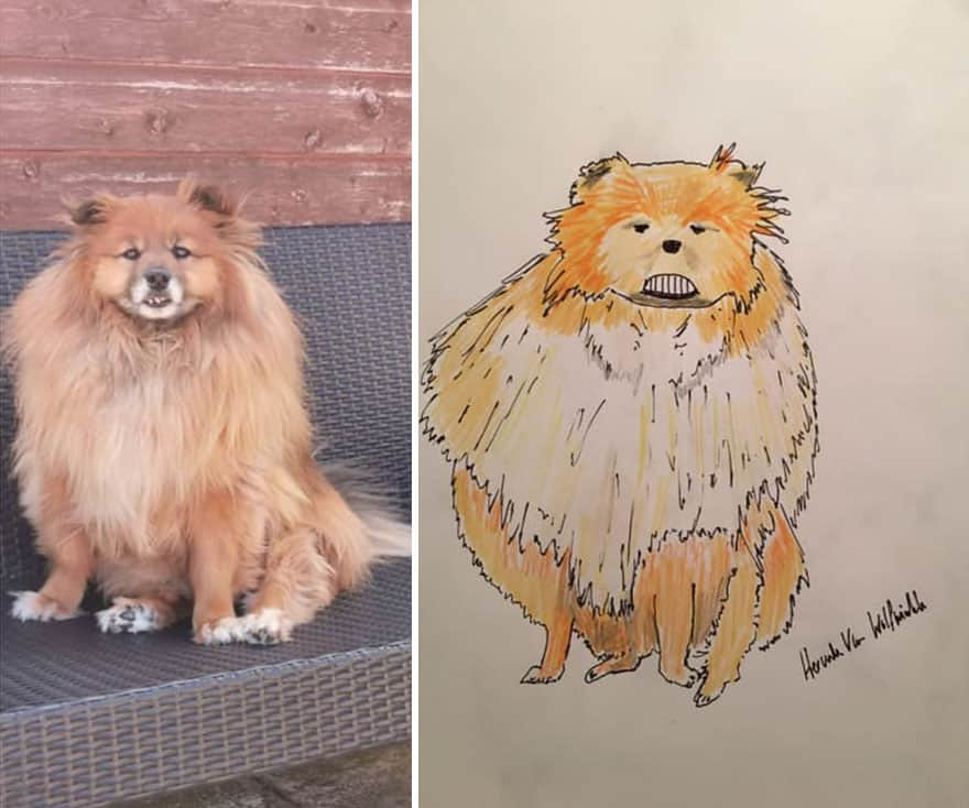 Pet Portraits by Hercule van Wolfwinkle