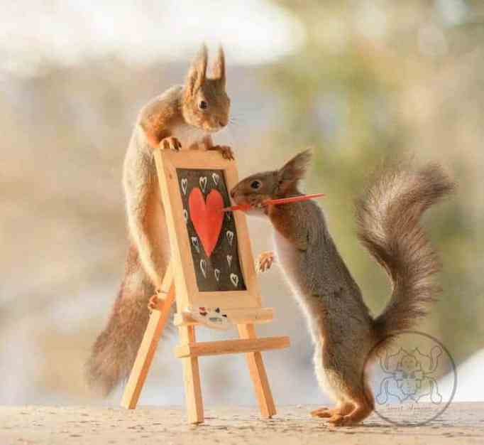 Two squirrels playing with a paintbrush and canvas