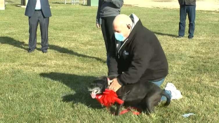 Lola reunited with her owner Steve Mejeur