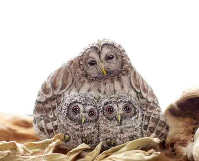 An image of an owl family painted on a stone by Akie Nakata
