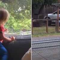 Little girl's daily dance-off with mailman brings joy to viewers: 'My heart needed this'