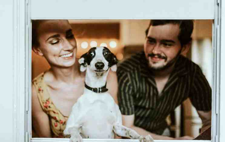 A happy couple, looking at their dog lovingly.