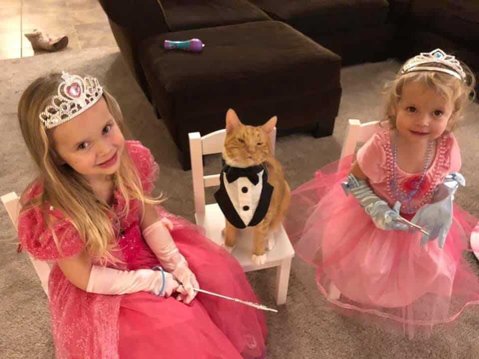 Two little girls wearing princess costumes and a cat in a mini tuxedo